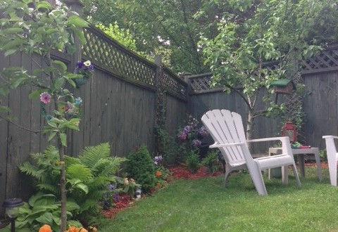 Landscaping Ideas For Backyards Turning A Soggy Backyard Into A