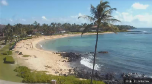 Sheraton Kauai Resort streaming beach cam
